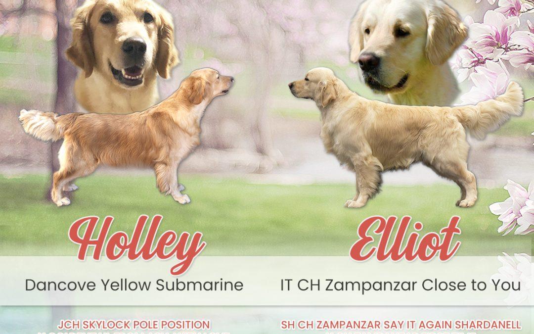 Sono arrivati i cuccioli di Holley & Elliot